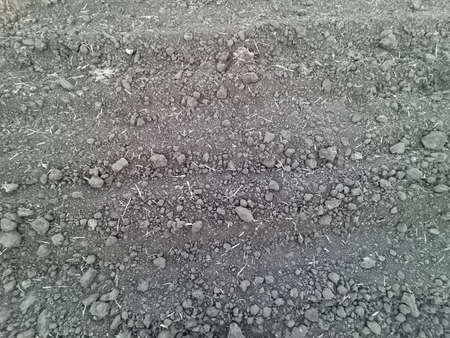 Texture of small pebbles of gray color. Construction and road works. Foto de archivo