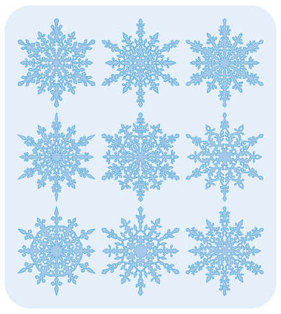 Set of nine different highly detailed snowflakes. Ilustrace