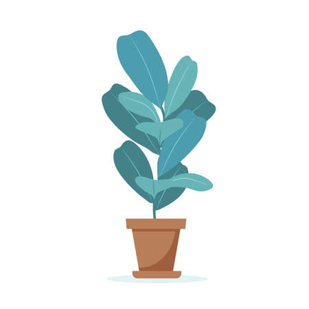 Home plant cute illustration in flat style Stok Fotoğraf