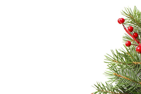pine boughs: Christmas fir tree with decoration isolated on white background