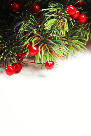 a bough: Christmas fir tree with decoration isolated on white background