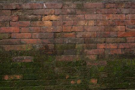 Mossy Brick Texture