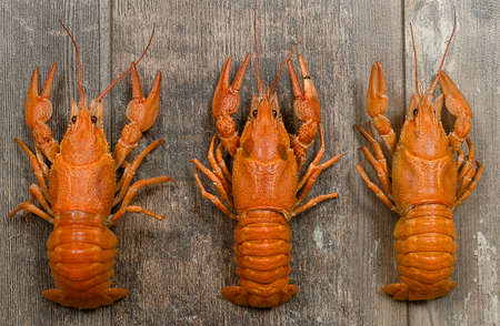 fluvial: Three red crayfishes in a row on old dark wooden table close-up Stock Photo