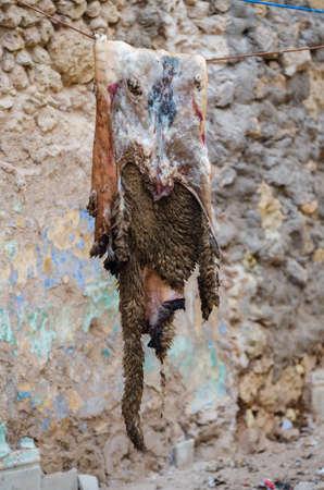 sheep skin: A skin of a sheep hanging on a rope