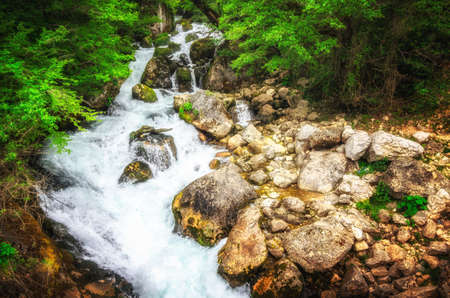 Jungle landscape with flowing turquoise water of georgian cascade waterfall at deep green forest. Mountain of georgia. Stock Photo