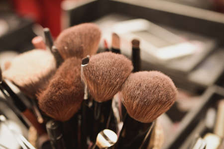 ceremonial make up: brush set for make-up