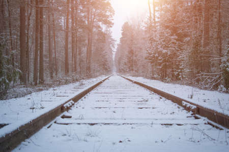 abandoned old railway in the winter forest 版權商用圖片 - 114704189