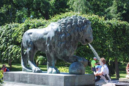 PETERHOF, RUSSIA - JULY 01, 2011: Lion fountain Colonnade Down Park Petrodvorets Peterhof Editorial