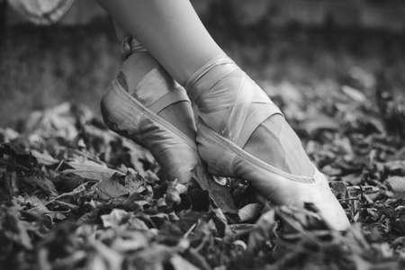 ballerina legs in autumn park among foliage