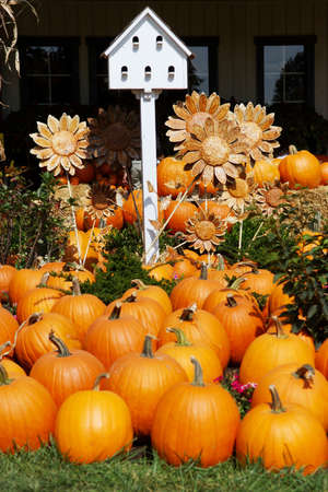 A collection of fall objects including pumpkins, a birdhouse and sunflowers Stock Photo - 20153383