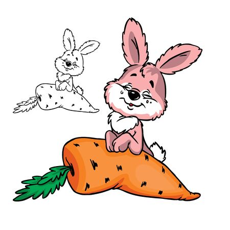 Illustration of cute bushy bunny with carrot in color and outline, isolated on background.