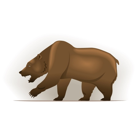 bearish market: Bear vector illustration in color, financial theme ; isolated on background.  Illustration