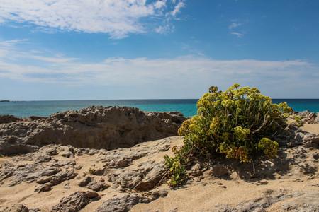 kreta: Exotic beaches - Crete, Greece