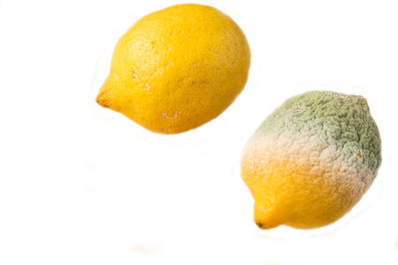 Food - Lemons - one good one rotten - white background Stock Photo