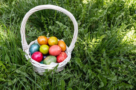 Easter eggs in nature with flowers - white basket