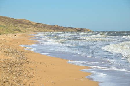 azov sea: Deserted beach of the Azov sea