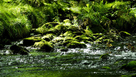 rivulet: Small rivulet in lake district, UK