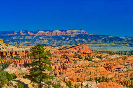 View at Bryce canyon national park