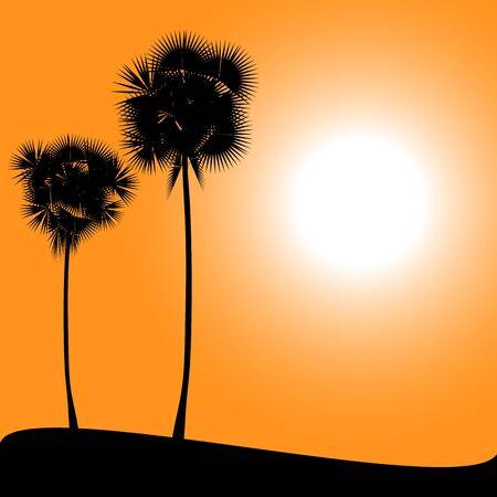 backlit: Palm on desert