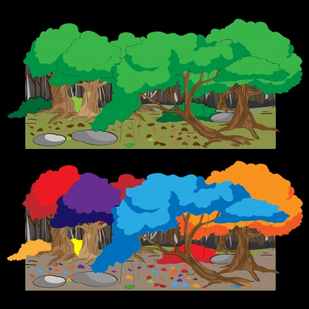 brook: forest Colorful