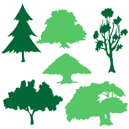 tree Collection Stock Vector - 17455709
