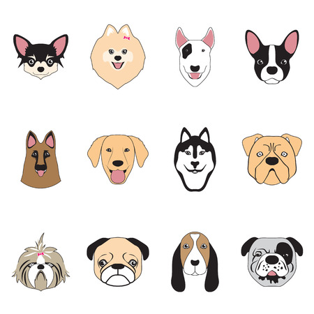 dogs collection,vector
