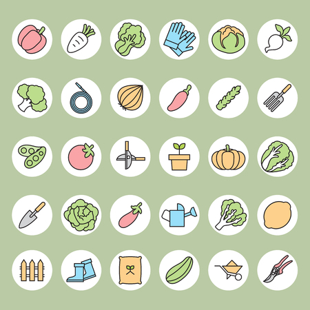 courgette: Vegetable garden and  Gardening equipment ,vector icon