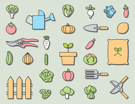 the sprouting: Vegetable garden and  Gardening equipment ,vector icon