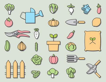 gardening  equipment: Vegetable garden and  Gardening equipment ,vector icon