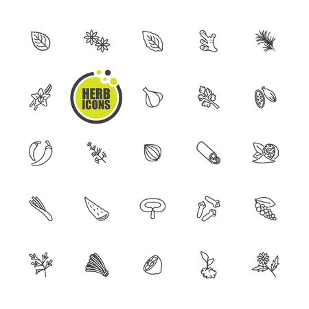 Herbs and spices icon