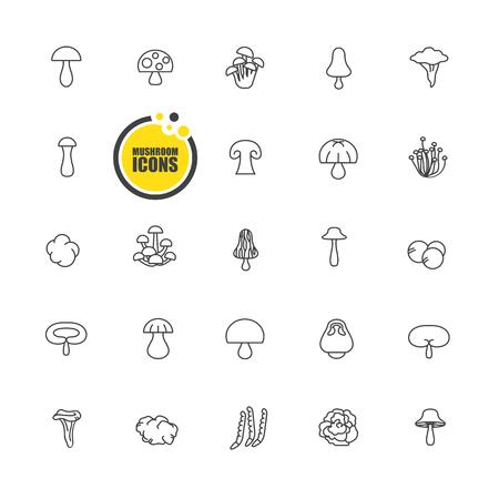 lucidum: mushrooms icon