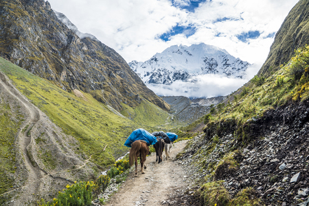Salkantay Trekking Peru the road to Machu Pichu
