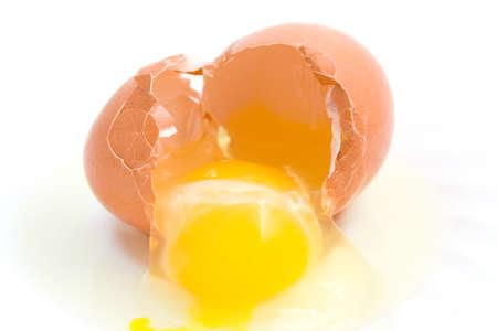 zygote: Shattered eggshell. Stock Photo