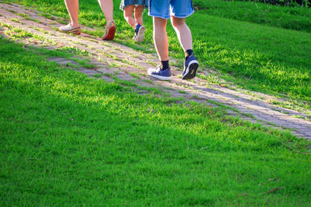 romp: Family romp in the park at dusk in evening relax time