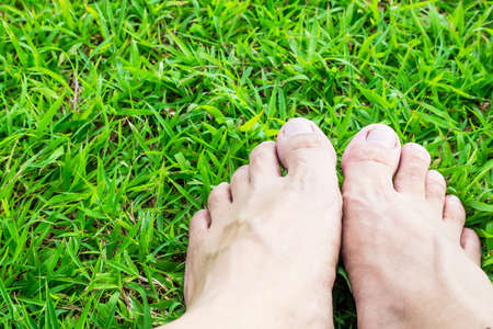 personal perspective: Foot on the green grass in the sunshine in garden