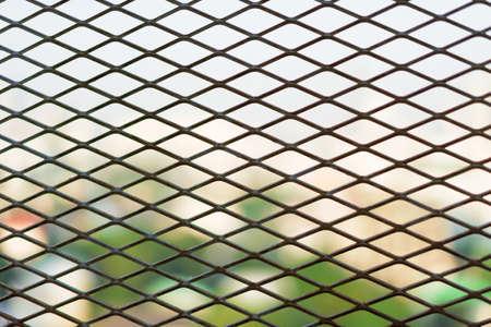 loe: Steel Cage diamond foreground bushes in loe light.