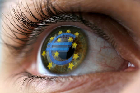 The Euro symbol in a human eye Stock Photo - 9385541