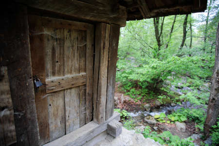 Old wooden door from a forest house photo