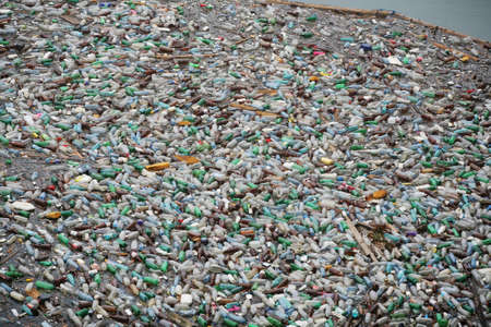 Lots of plastic bottles on a lake surface