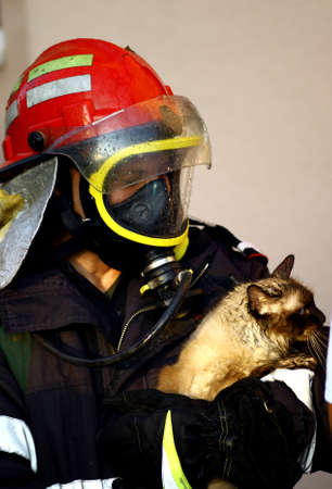 Bucharest, Romania - October 2, 2012: A fire fighter holds a cat, after saving it from a burning block of flats in Bucharest.