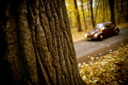 Color shot of a blurred classic car in a forest