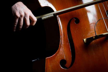 double: Color detail of a vintage double bass