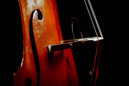 Color detail of a vintage double bass