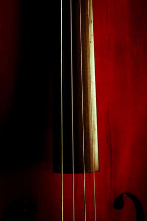 Color detail of a vintage double bass photo