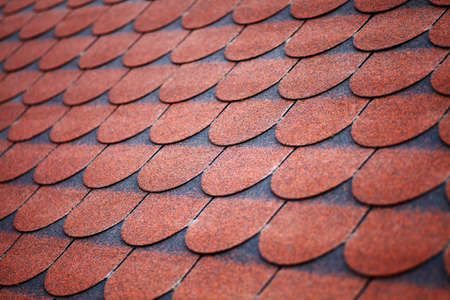 Color picture of some roof with tiles Stock Photo - 22880179