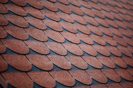 Color picture of some roof with tiles photo