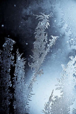 Close-up shot of some icy-flowers on a window photo