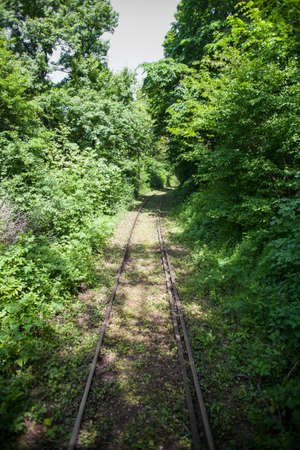forest railway: Color shot of an empty railway in a forest. Stock Photo
