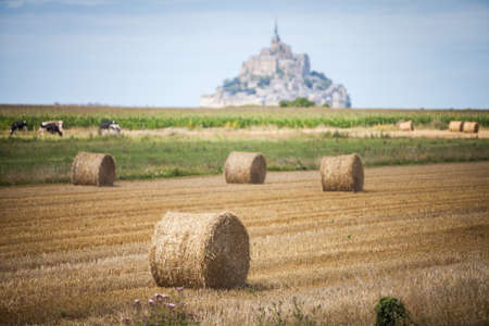 mont saint michel: Color image of some hay rolls on a field, with Mont Saint Michel in the background.