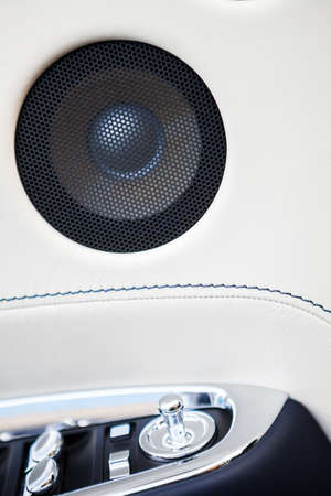 decibel: Close up image of a cars stereo speaker.